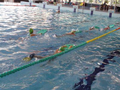 Plavání 2011.